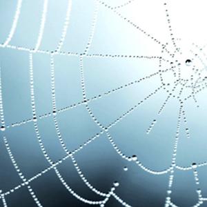 Wij helpen uw website onderhouden tegen een vaste lage vergoeding.